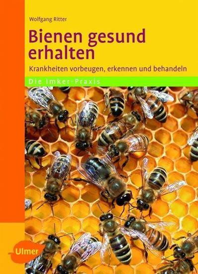 Bild von Bienen gesund erhalten