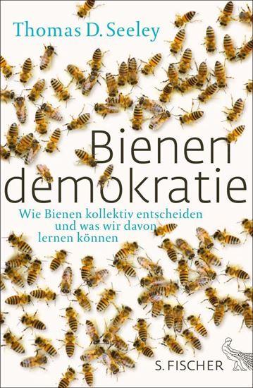 Bild von Bienendemokratie